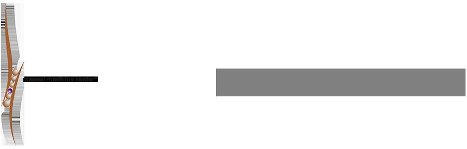 Amerikanische Chiropraktik, Chiropraktik , Osteopathie Dortmund